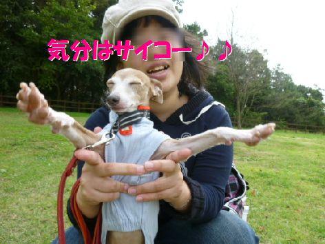 d_20111021063710.jpg