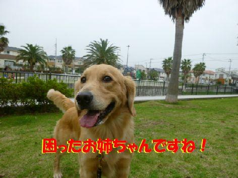 g_20111014070109.jpg