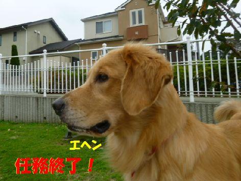 i_20111014070109.jpg