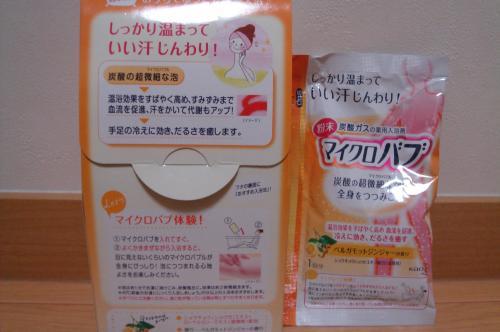 DSC06833_convert_20101208204420.jpg