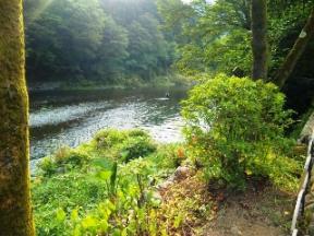 玉川屋 近くの川