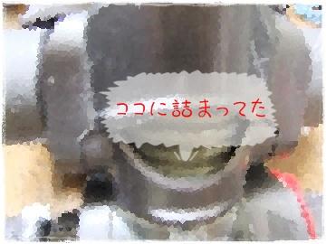DSCF7275s.jpg
