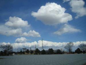 20080306-7.jpg
