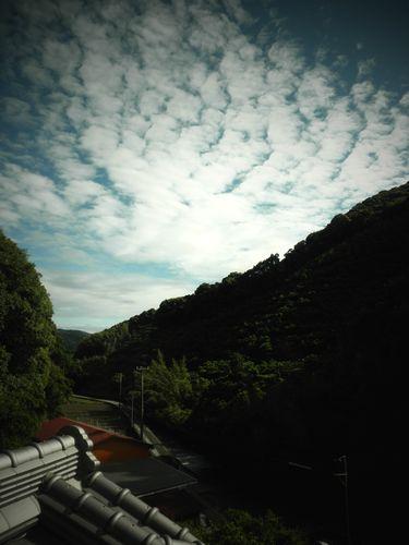 2011.5.29 taifu-ikka