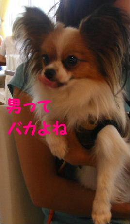 2006_06300059.jpg