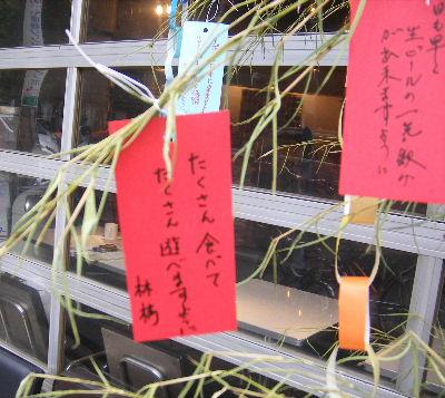 2006_07070006.jpg