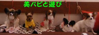2006_07290060.jpg