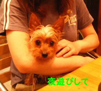 2006_07290121.jpg