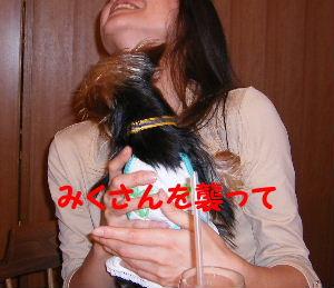 2006_07290186.jpg