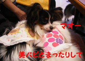 2006_07290198.jpg
