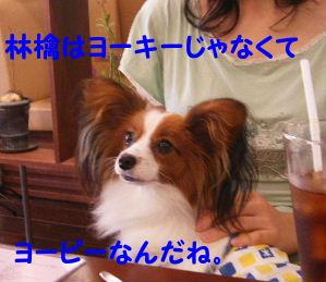 2006_07290206.jpg