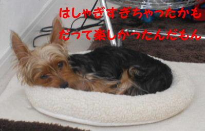 2006_09160021.jpg