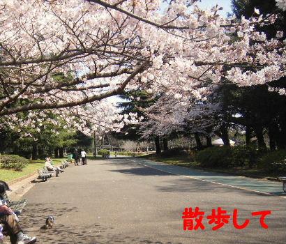 2007_03280051.jpg