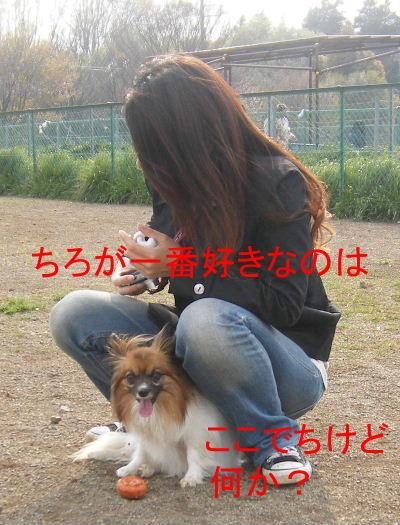 2007_04140021.jpg