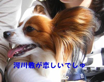 2007_04140032.jpg