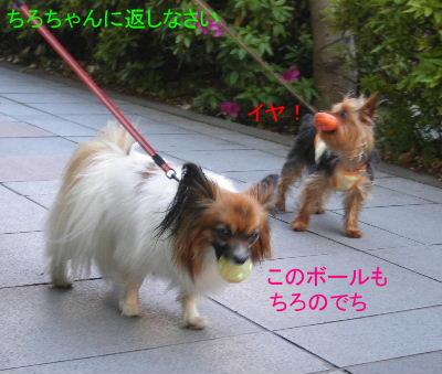 2007_04290012.jpg