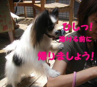 2007_06130008.jpg