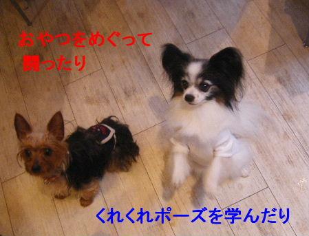 2007_07070014.jpg