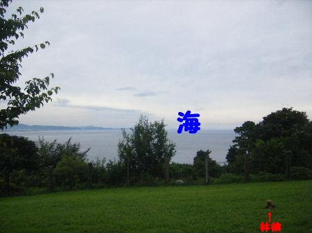 2007_07150042.jpg