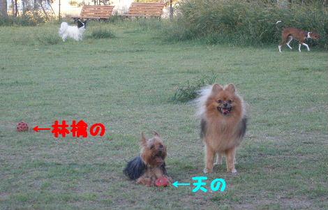 2007_09250034.jpg