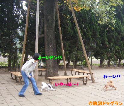 2007_10160003.jpg