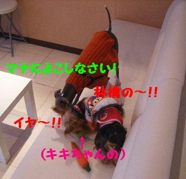 2007_10260033.jpg