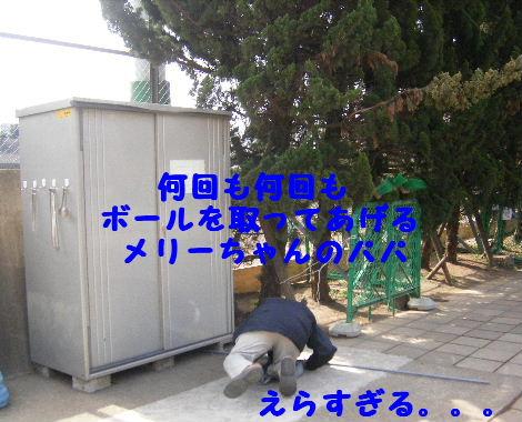 2008_03020025.jpg