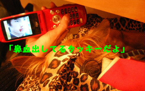 2008_03020042.jpg