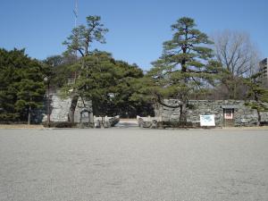 tokushima01.jpg