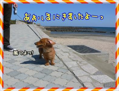 青島到着!