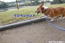 2009092508.jpg