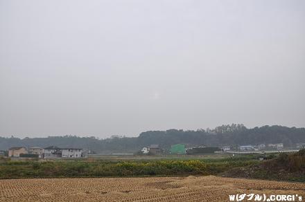 2009102402.jpg