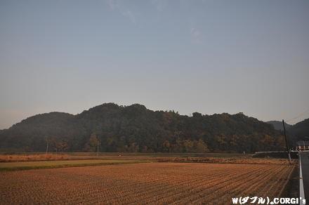 2009110702.jpg