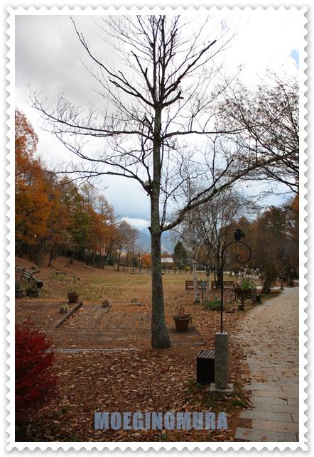 20091102-12.jpg