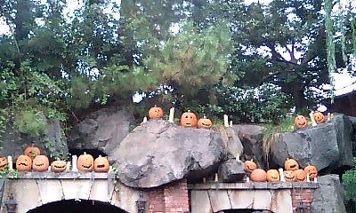 かぼちゃまつり。