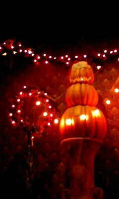 このかぼちゃが一番お気に入り