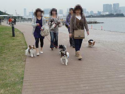 みんなでお散歩♪①