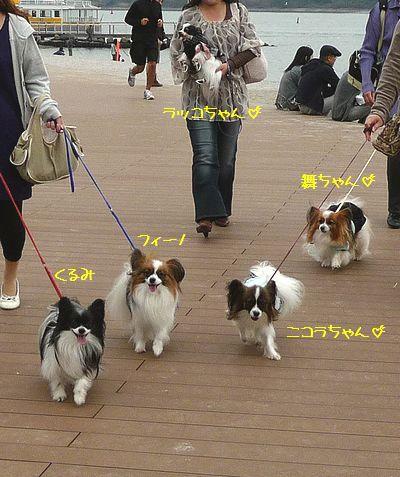 みんなこっち向いて~(*^▽^)
