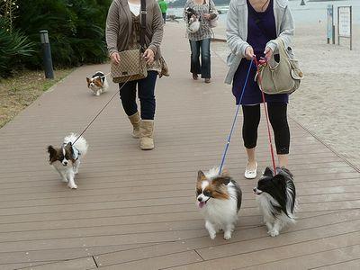 みんなでお散歩♪④