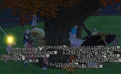 20071124 (6)