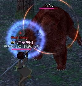 20080302 (4)