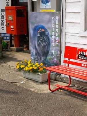 猫駅長のいる芦ノ牧温泉駅