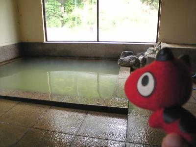 滝の湯旅館の女湯(西山温泉)with あかべぇ