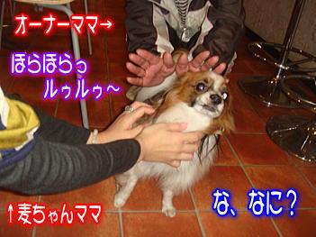 20071129005518.jpg