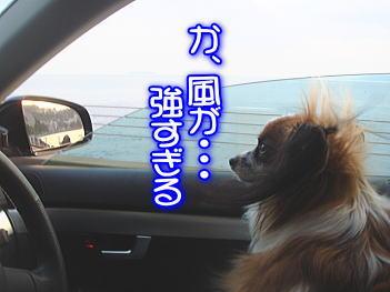 12.18風が