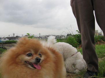 20110610ryo.jpg