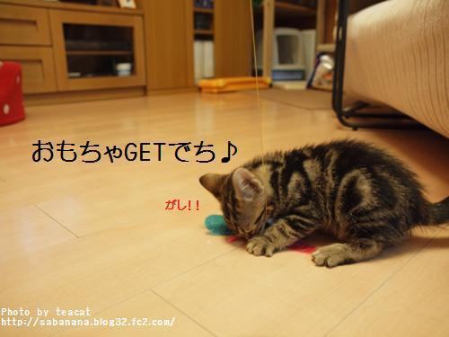 02142_20110215100243.jpg