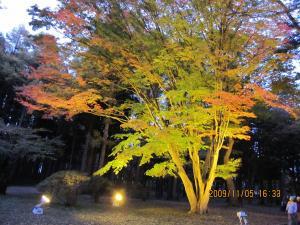 2009-11-kousetsuen+013_convert_20091111153413.jpg