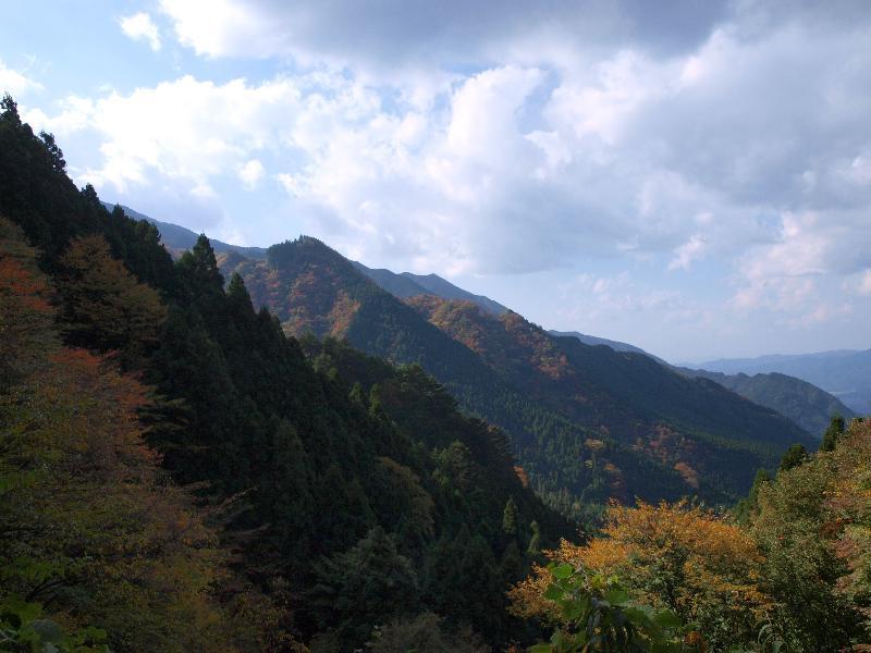 唐岬の滝までの風景
