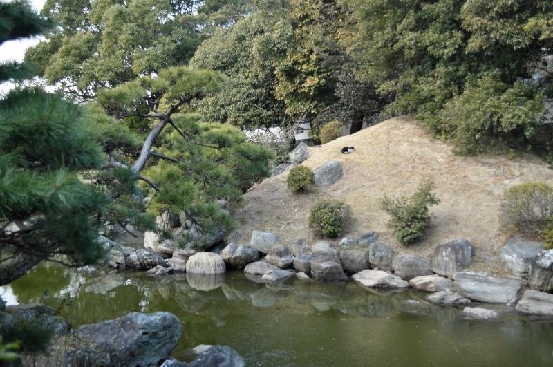 徳島市 旧徳島城表御殿庭園